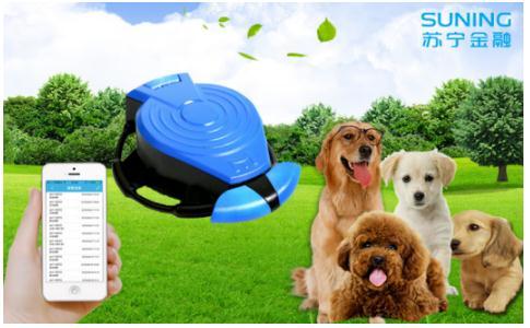 苏宁金融推智能GPS定位器 呵护宠物宝宝