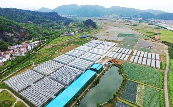 """宋卫平的蓝城农业要做""""服务商""""首个农庄开放"""
