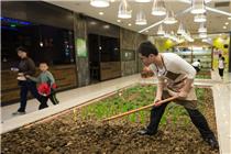 南京艾尚天地内耕地养猪  打造都市农家生活