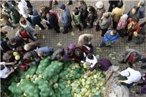 太原千余人排队争领免费滞销蔬菜