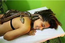 """巴西美容院为顾客提供""""蟒蛇按摩""""受热捧"""