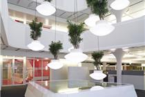 绿色植物与灯具的中庭吊挂设计