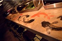 容易坠入爱河的日本风格餐厅