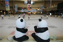 100只熊猫游杭州万象城