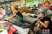 青岛超市现412斤巨型箭鱼王