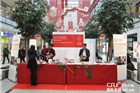 """""""欢乐春节""""中国民间艺术亮相柏林购物中心"""