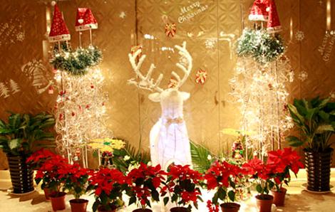 【赢金币】晒出你身边最美圣诞布景