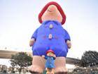上海ifc商场柏灵顿宝宝熊圣诞微型景观展