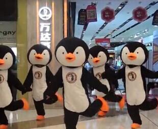 万达萌萌哒小企鹅们要火了 视频已转疯