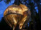 新西兰神秘树屋餐厅酷似电影《阿凡达》场景