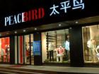 太平鸟20周年最新企业宣传片